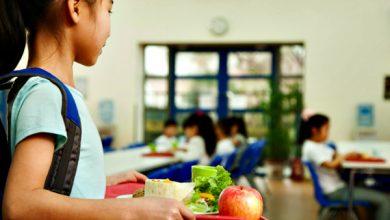 Foto de Projeto de alimentação escolar mais saudável é aprovado pela Alesp